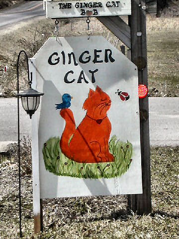 The Ginger Cat B&B